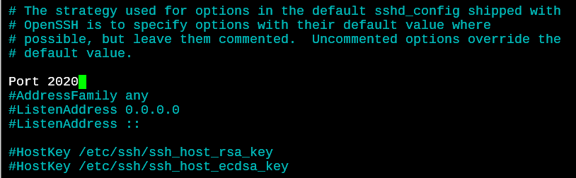 SSH Default Server Port 1