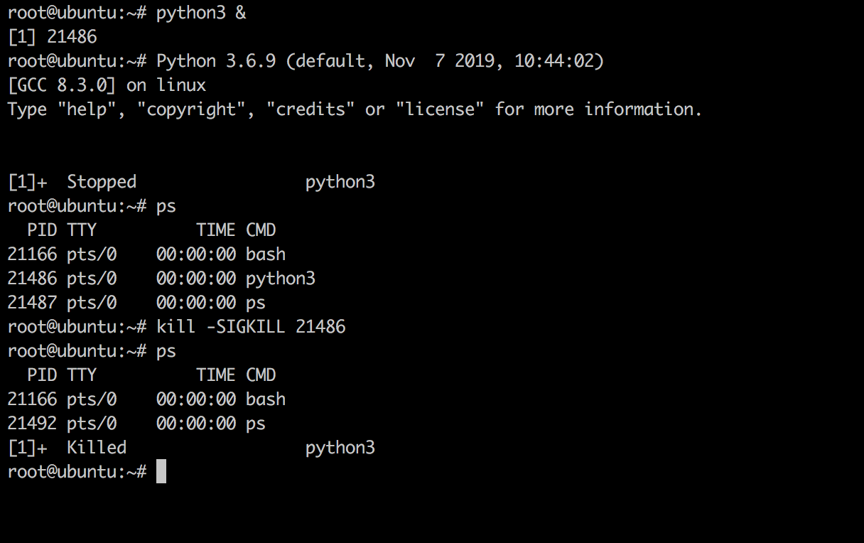 Linux Kill Process Example
