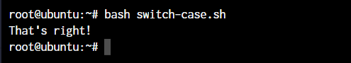 Switch Case in shell scripts