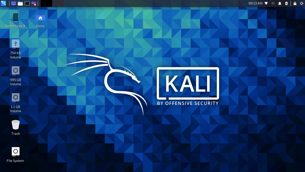 Kali Linux Booted From Live, Persistent, Encrypted ISO