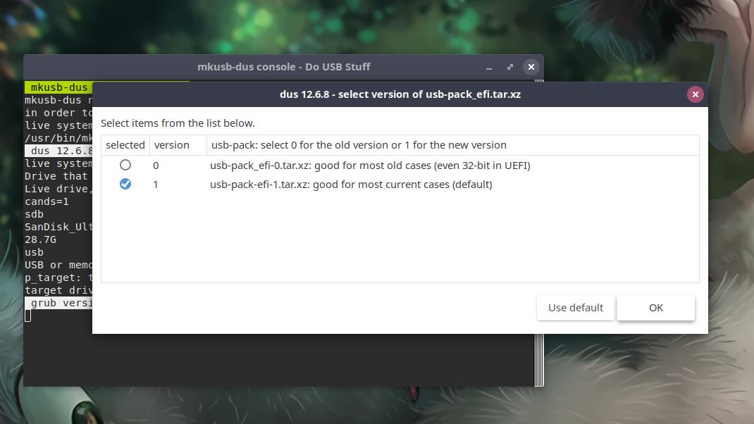Selecting Version Of Usb Pack Efi